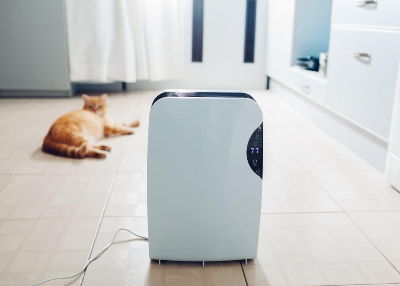 Осушитель воздуха в комнате